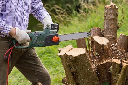 abattage d arbres vienne indre et loire
